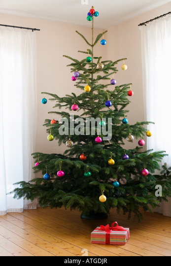Christmas Tree Stock Photos & Christmas Tree Stock Images - Alamy