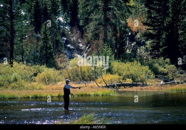 Bishop fisher stock photos bishop fisher stock images for Bishop ca fishing