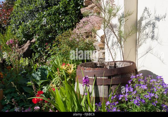 Permanent Flower Garden : Malvern flower show stock photos
