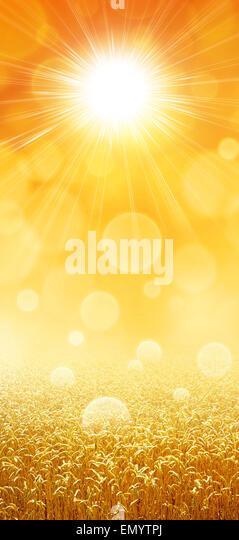 Diet Sunshine Stock Photos Amp Diet Sunshine Stock Images