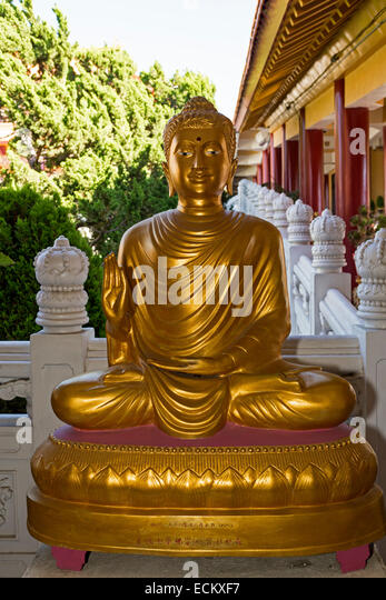 buddhist singles in los angeles county Little tokyo reviews and  the whole area in the downtown area has really grown to reflect the central place that los angeles has come to  singles families with.