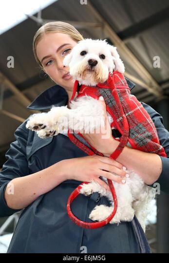 Dog Show Holmfirth Th August