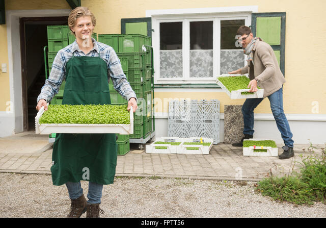 hydroponics farm stock photos hydroponics farm stock images alamy. Black Bedroom Furniture Sets. Home Design Ideas
