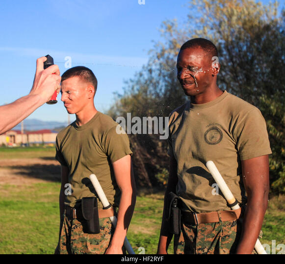 Military Police With 1st Law Enforcement Battalion Stock ...