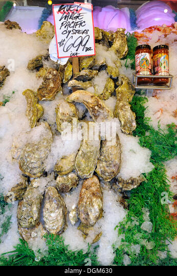 Oysters ostreidae stock photos oysters ostreidae stock for Public fish and oyster