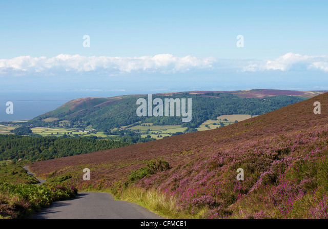 Exmoor National Park United Kingdom  City pictures : Exmoor National Park near Porlock, Somerset, England, United Kingdom ...