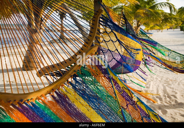 belize ambergris caye several colorful hammocks blowing in wind sandy beach and palm trees caribbean waters belize beach hammock stock photos  u0026 belize beach hammock stock      rh   alamy