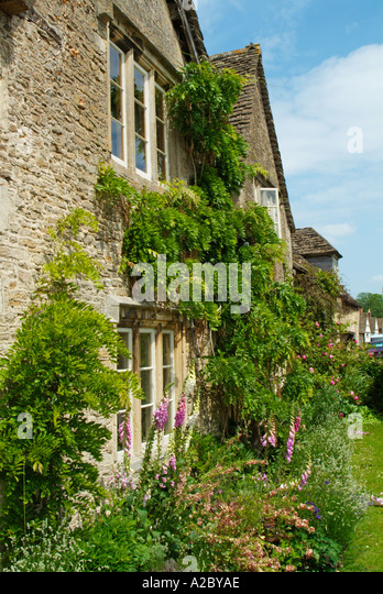 old quaint country cottage with climbing plants on trellis in lacock wiltshire england uk gb eu - Climbing Plants