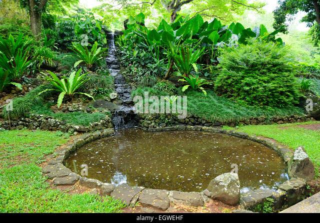 Allerton gardens stock photos allerton gardens stock - National tropical botanical garden ...