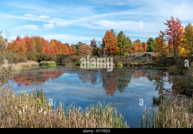 Canadian Tire Plateau >> Canadian Fall Stock Photos & Canadian Fall Stock Images - Alamy