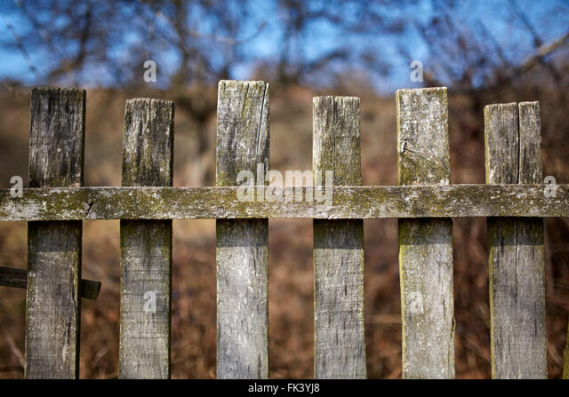 Rustic Wooden Fence