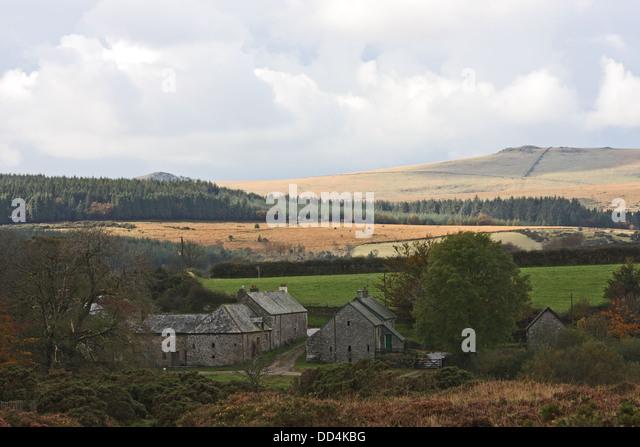 dartmoor farm stock photos dartmoor farm stock images