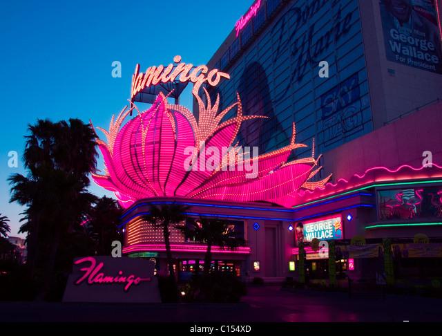 Casino flamingo pink casino games including blackjack