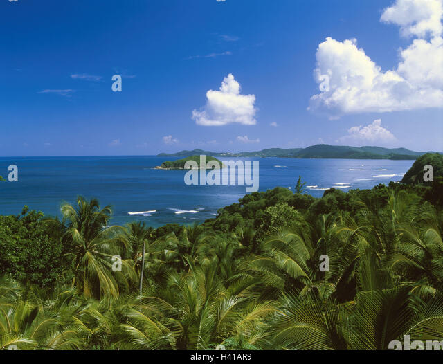 Explore The Beauty Of Caribbean: La Martinique Stock Photos & La Martinique Stock Images