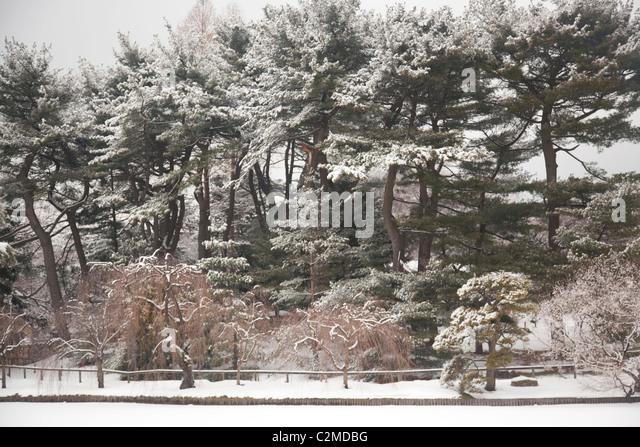 New York Botanical Garden Winter Stock Photos New York Botanical Garden Winter Stock Images