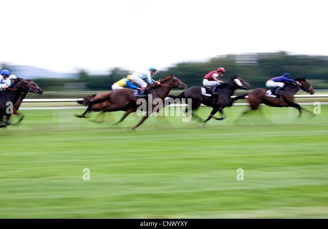 baden baden horse racing