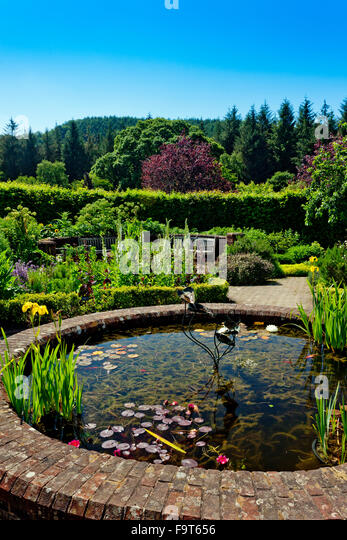 Circular pond in garden stock photos circular pond in for Ornamental pond fish uk