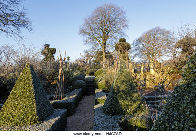 Frost Topiary Stock Photos Frost Topiary Stock Images