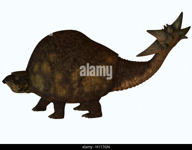 glyptodont profile stock image