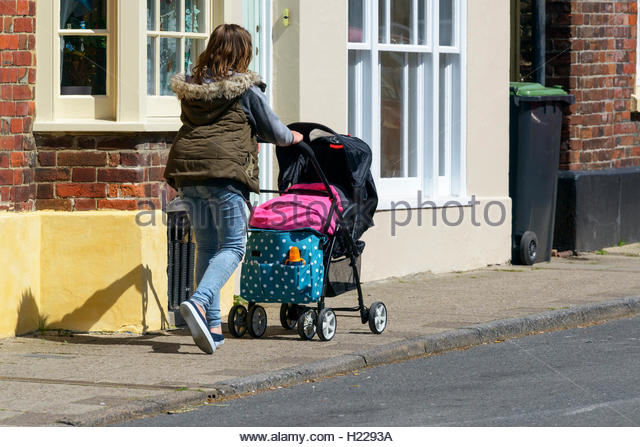 dorset single parents Seaton (/ ˈ s i t ə n /) is a  (155 km) long dorset and east devon coast world heritage site,  of which approximately one third are of single-person occupancy.