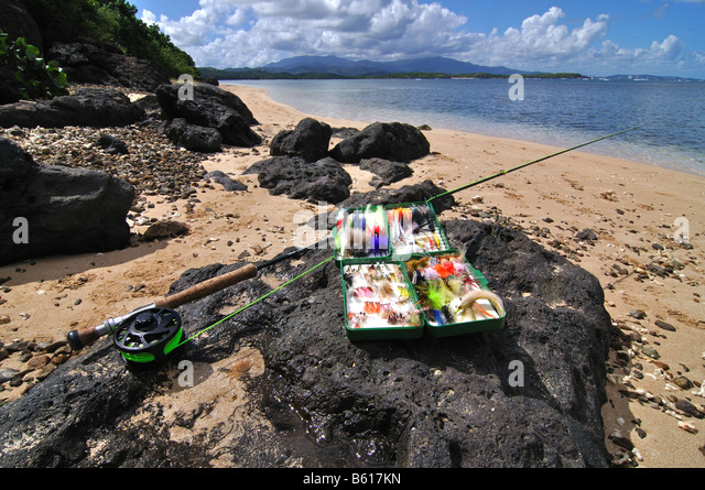 Permit fish stock photos permit fish stock images alamy for Fly fishing puerto rico