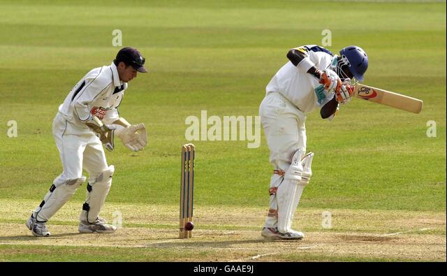 Cricket Stump Out Stock Photos Cricket Stump Out Stock