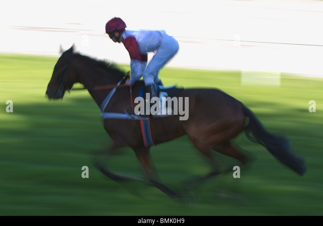 Leading Gallop Horse And Jockey Against Motion Blurred Background Horizontal Stock Image