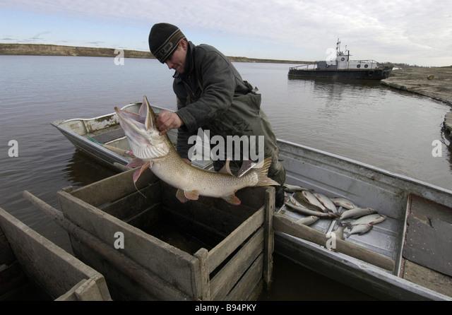 Irtysh stock photos irtysh stock images alamy for 94 1 the fish