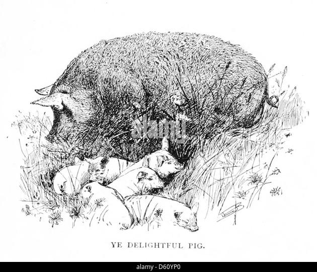 a dissertation upon roast pig essayist