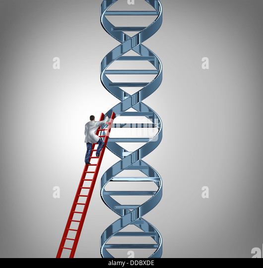 Genetic code stock photos genetic code stock images alamy genetic research and testing with a doctor or scientist climbing a red ladder to study a sciox Image collections