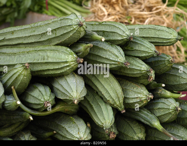 squash melon stock photos squash melon stock images alamy. Black Bedroom Furniture Sets. Home Design Ideas