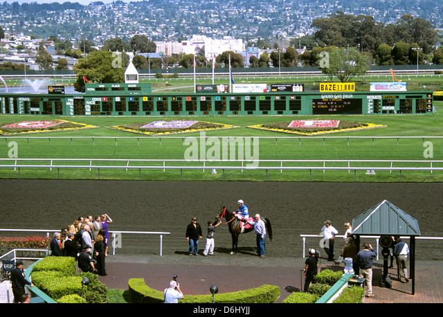 Horse Owners on Golden Gate Fields Turf Club