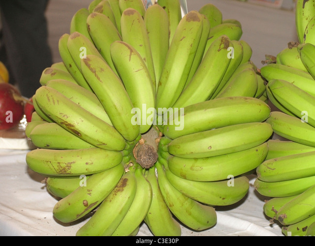 banana banana banana banana banana banana essay This task involved analyzing the chemical process that takes place in a banana this paper analyzes the biological and chemical processes that are involved in the.