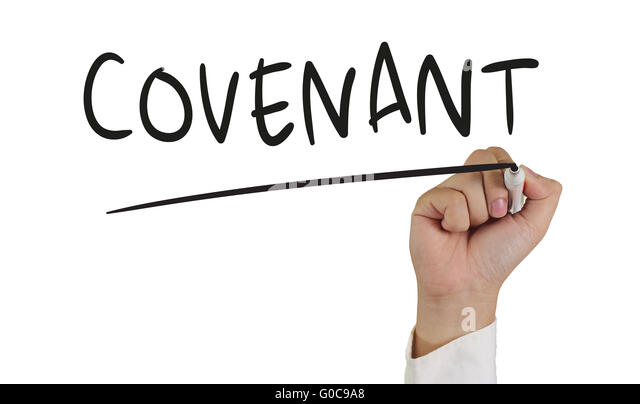 Covenant (law)