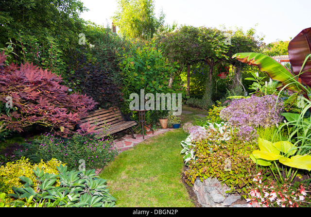 Typical English Garden Plants Flowers Stock Photos Typical