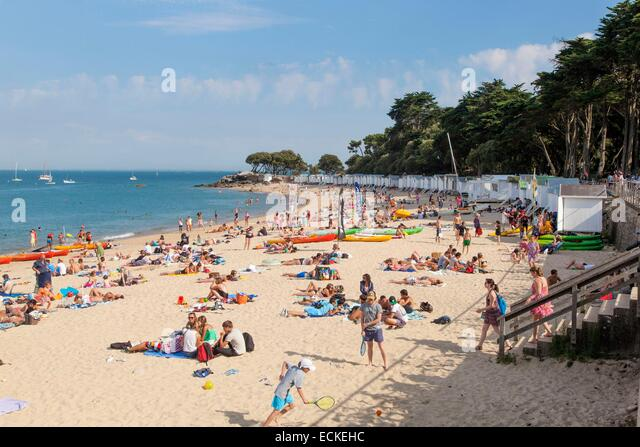 Noirmoutier and dames stock photos noirmoutier and dames for Bois de la chaise