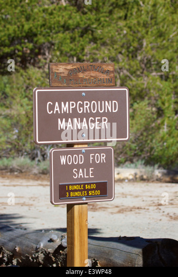 signpost for the campground manager firewood for sale stock image - Campground Manager