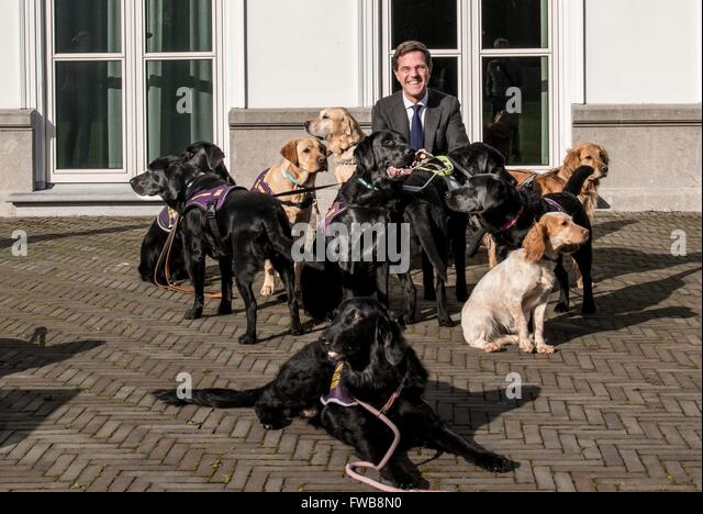 Maurits Hendriks Netherlands Prime Minister Mark Rutte L: Catshuis Stock Photos & Catshuis Stock Images