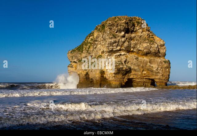 At marsden bay essay checker