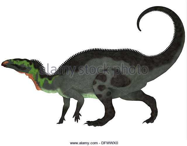 Camptosaurus Is A Genus Of Herbivorous Dinosaurs From The Late Jurassic Period