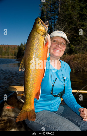 trout lake cougar women The free fish washington app,  is designed to convey up-to-the-minute fishing regulations for every lake, river, stream and marine area.