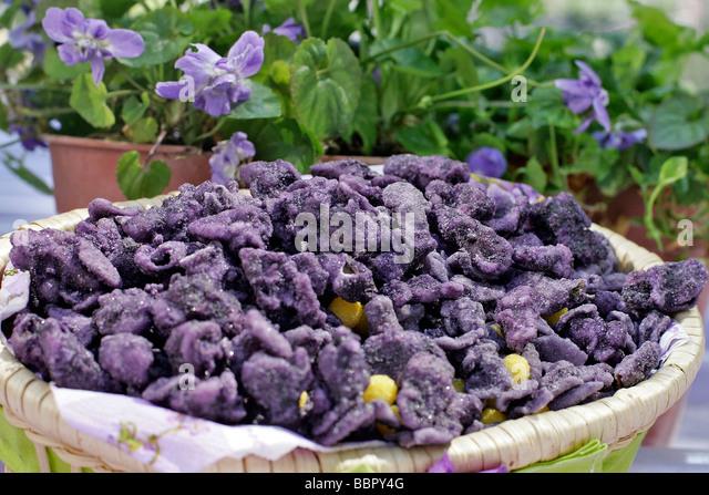 France haute garonne toulouse candy stock photos france for Maison violette toulouse