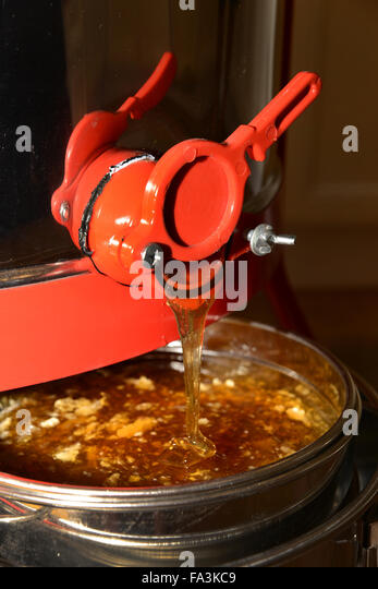 how to make a honey bee extractor