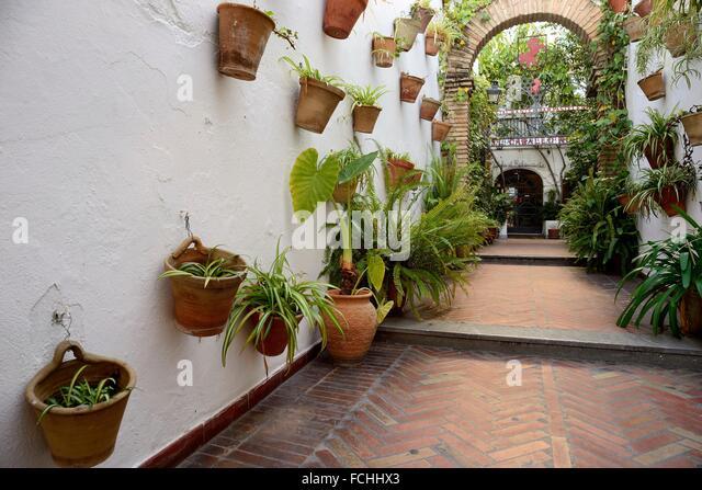 Cordovan Patio, Cordoba, Andalusia, Spain.   Stock Image
