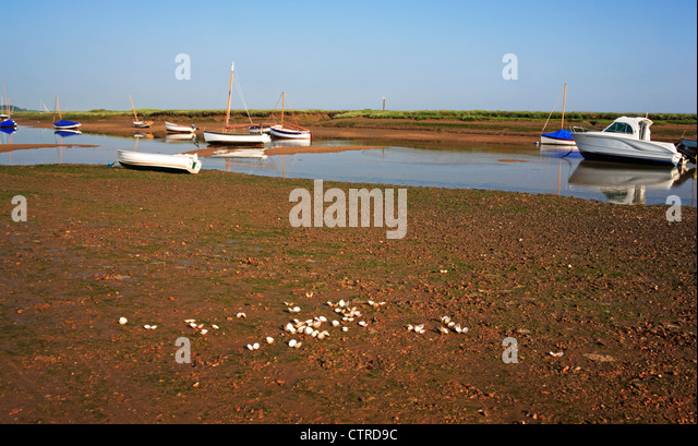 Shells At Low Tide Stock Photos & Shells At Low Tide Stock Images ...