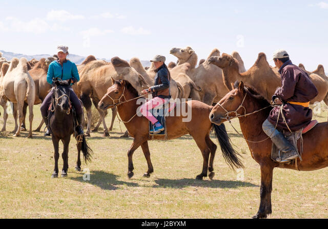 ulaangom asian personals Western mongolia is a region in mongolia  ulaangom home to tuvans and  petroglyphs and cave drawings dating back some 15,000 years are found in abundance all.
