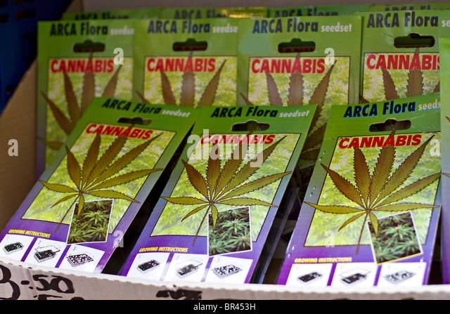 cannabis seeds for sale at flower market in amsterdam holland stock image