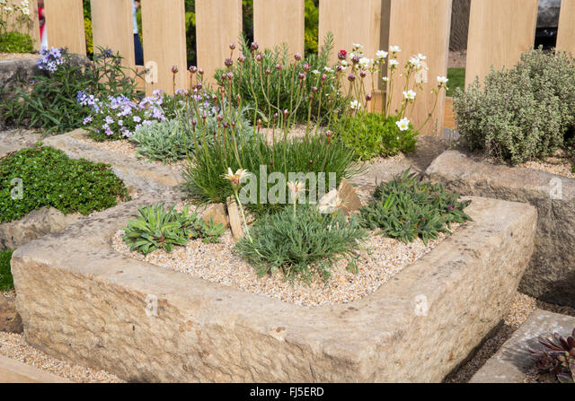 Malvern rhs festival 2015 stock photos malvern rhs for Pip probert garden designer