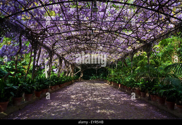 Jardin botanico stock photos jardin botanico stock for Bodas jardin botanico malaga