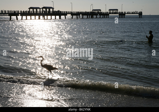 Fishing pier tampa stock photos fishing pier tampa stock for Fort desoto fishing pier